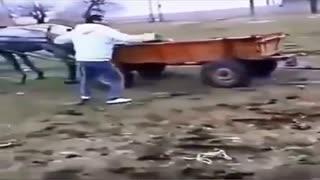 """1 """"лошадка"""" против 60 лс"""